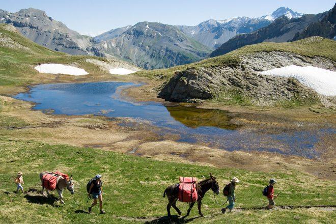 Eseltrekking in den französischen Alpen etwa mit Wandertouren Frankreich erfreuen sich großer Beliebtheit