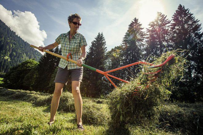 Heumachen: Die Landwirtschaft profitiert auch vom Tourismus im Tal. Genussziel in Vorarlberg