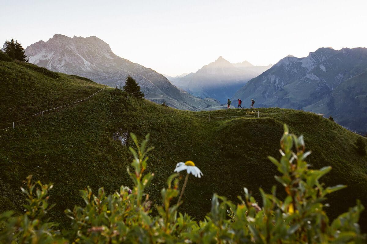 """Warth-Schröcken – Alpines Wandern zu imposanten Felsriesen. Während der """"Alpinen Wanderwochen"""" von 8. Juli bis 7. Oktober 2017 können Gäste in Warth-Schröcken auf geführten Touren die schönsten Gipfel und Ziele der Region erwandern"""