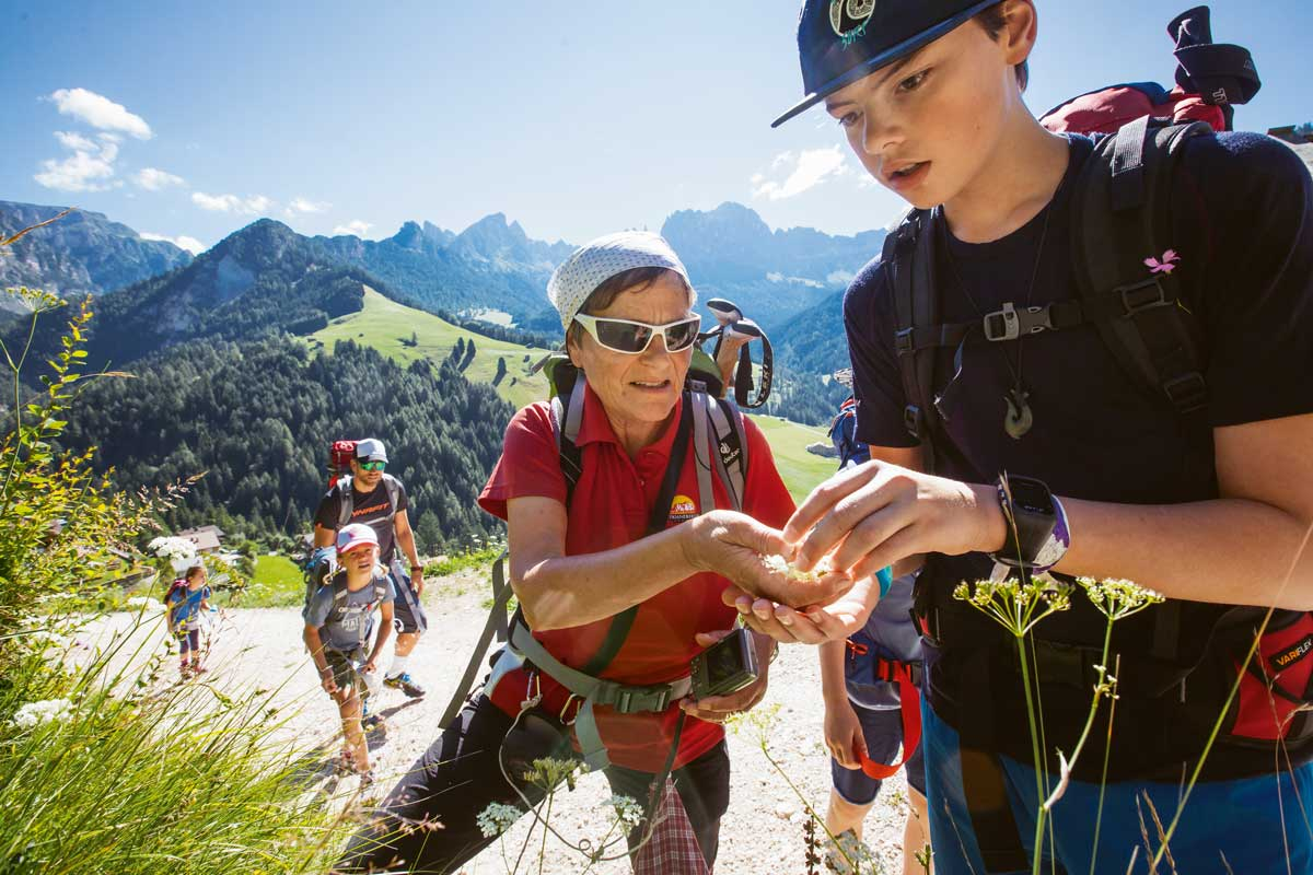 Alpensafari. Die Frau ist fast 70, fit wie eine 17-Jährige und kennt jede Blume im Rosengarten-Gebiet in Südtirol