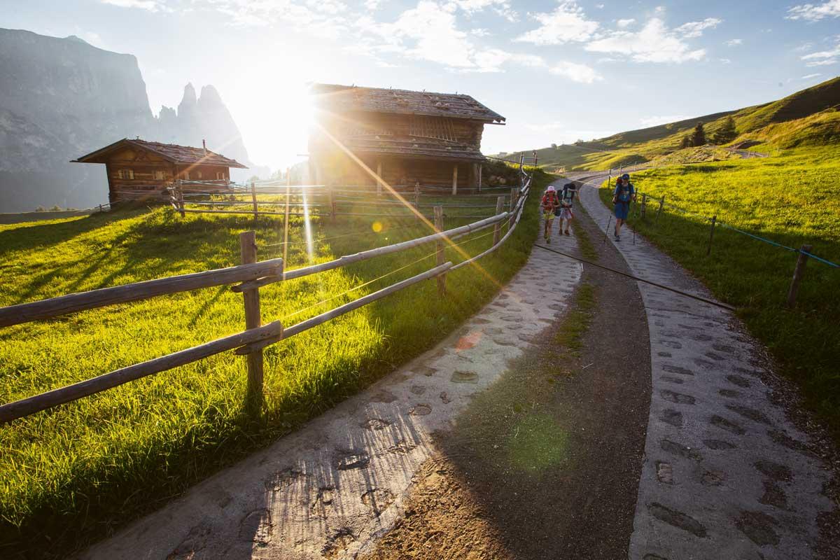 """Alpensafari. Abends um sieben brechen wir auf und wandern von der Seiser Alm in Südtirol zum """"Schlernhaus"""". Unvergesslich!"""