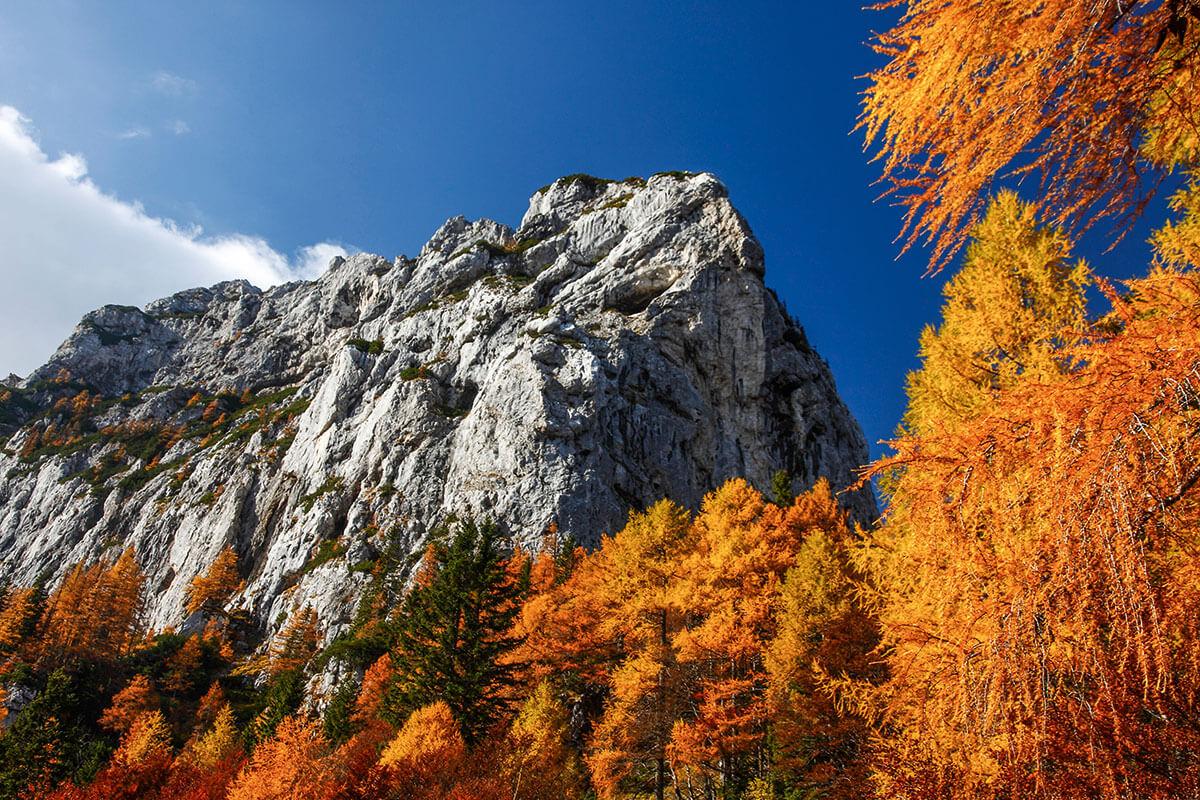Bergsteigerdörfer – wo die Alpen noch ursprünglich sind. Zell (Sele)
