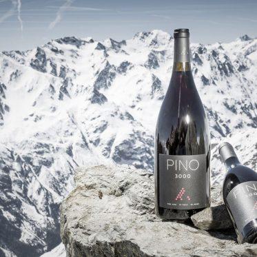 Wein am Berg in Sölden – Höhenflug der Aromen. Der Pino 3000 reift in Holzfässern auf über 3000 Metern Seehöhe. Ein guter Wein glänzt in luftiger Höhe plötzlich mit fruchtigen Aromen