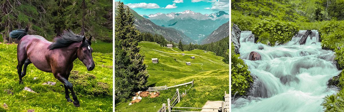 Wir gaben uns den Blöß – und zwar bei Sonnenuntergang. Osttirol Defereggental