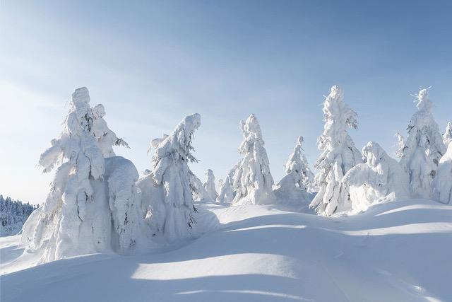 Wie entsteht Schnee?