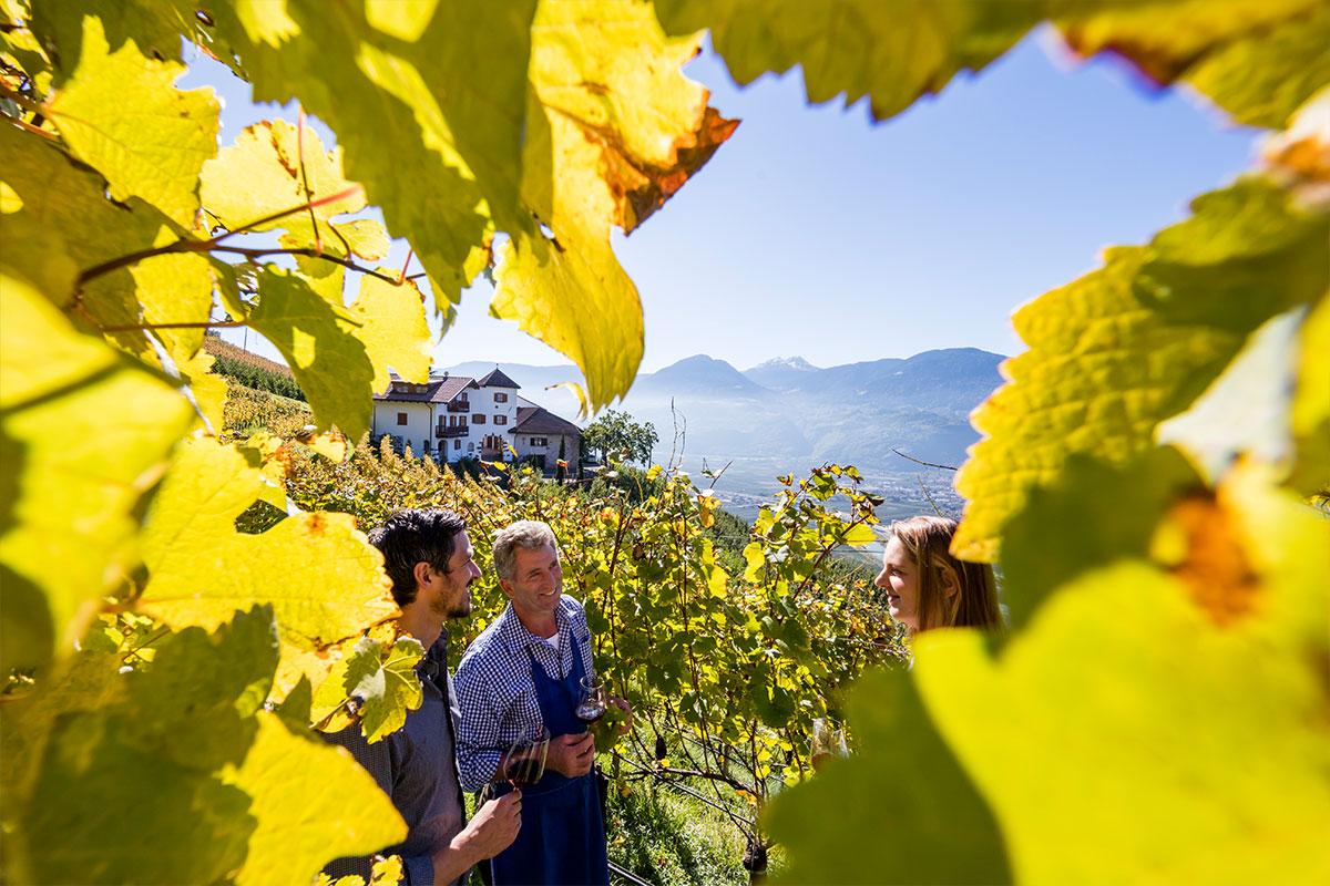 Südtiroler Weinhof