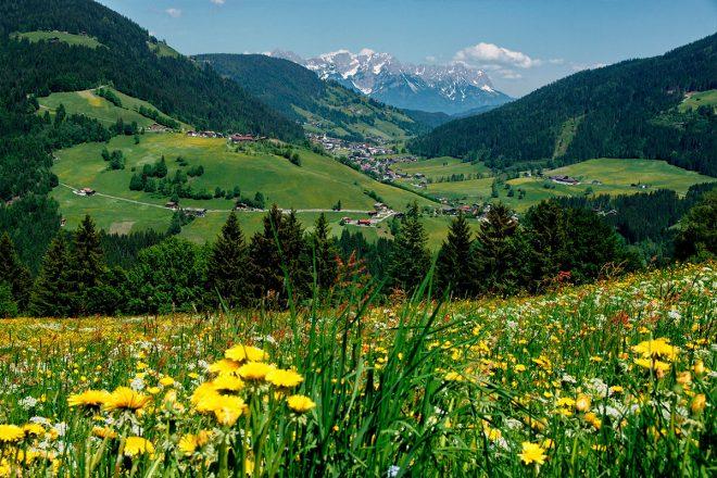 Still-Leben in der Wildschönau: von einem Tiroler Hochtal, seinen Bewohnern und dem ausgeprägten Wird-scho-Gefühl