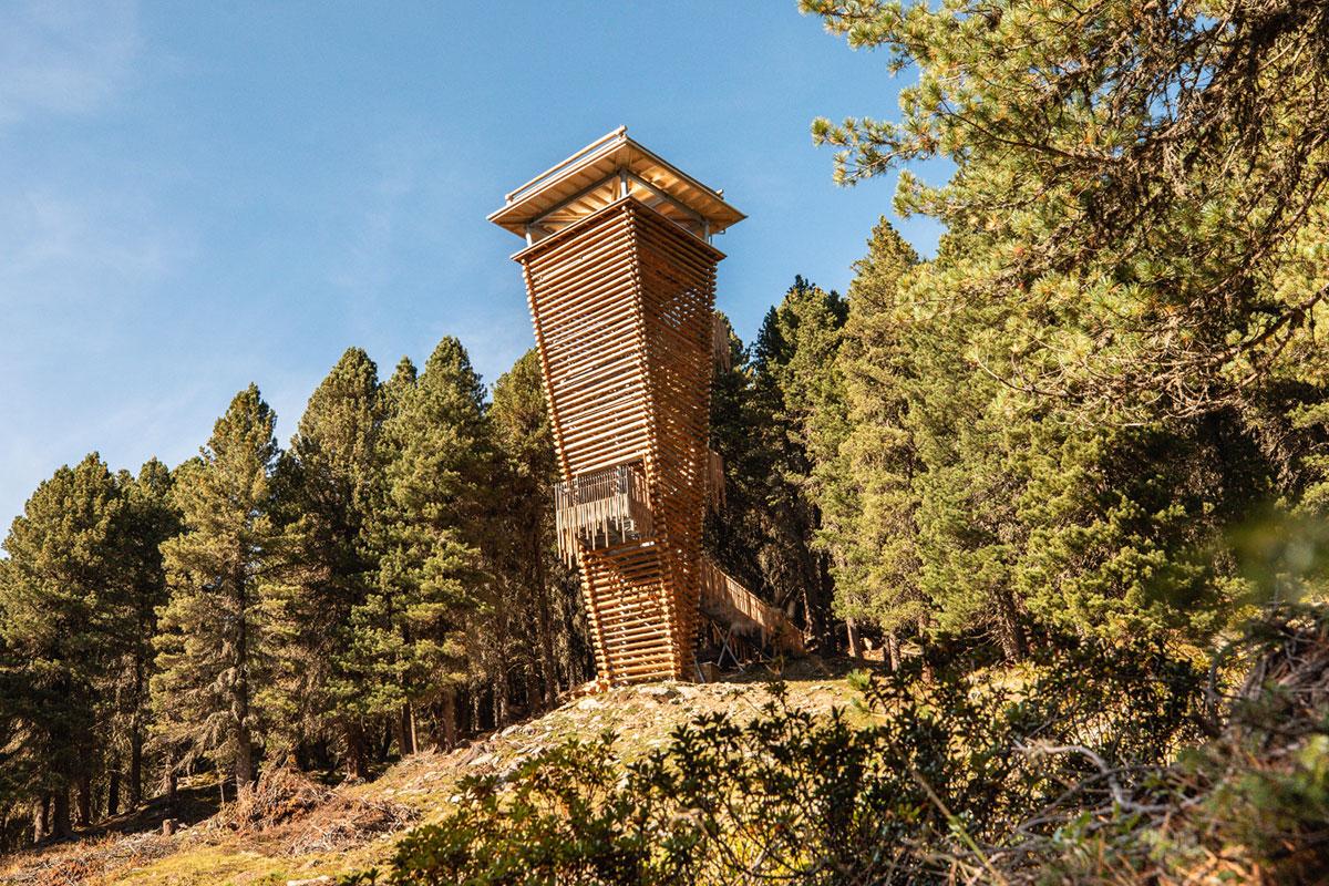 Mitten drin im Oberhauser Zirbenwald steht ein 22 Meter hoher hölzerner Beobachtungsturm. © Nationalpark Hohe Tauern/Ramona Waldner