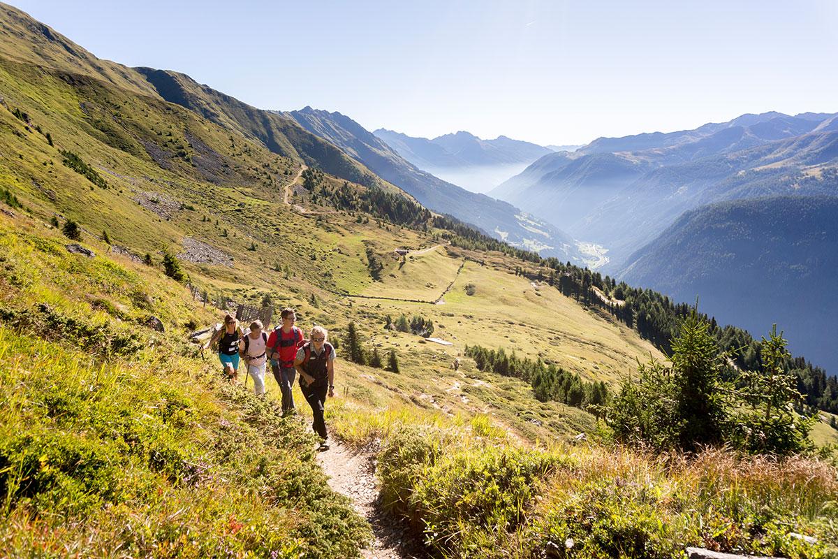 Die Nationalpark Ranger bieten den Besuchern geführte Touren an und erklären die Flora und Fauna Osttirols. Foto: © Nationalpark Hohe Tauern - Martin Lugger