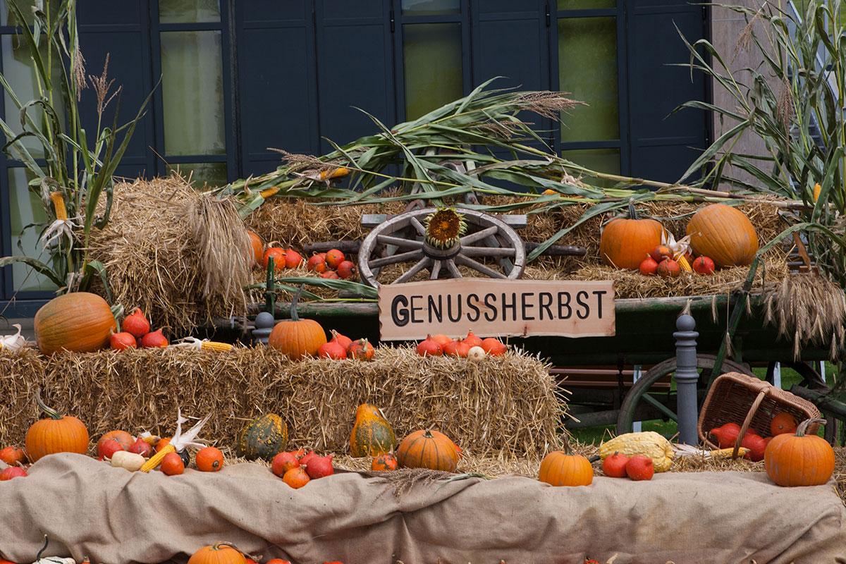 Genussherbst in der Ferienregion Serfaus-Fiss-Ladis. Foto: © Serfaus-Fiss-Ladis Marketing GmbH - Andreas Kirschner