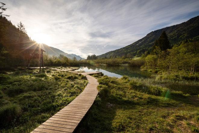 Grüne Wiesen und Wälder prägen das Landschaftsbild in Slowenien. © Foto: Mitja Sodja