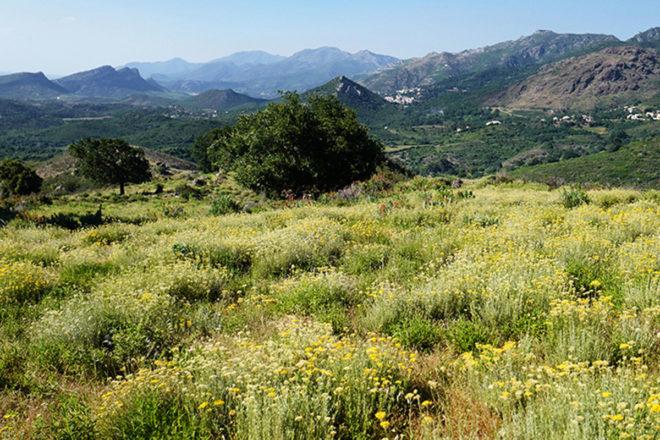 L'occitane für Natur und Mensch