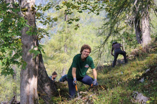 """Es ist anstrengend, das Almschwenden – aber das Arbeiten draußen in dieser einmaligen Berglandschaft vermittelte den Teilnehmern des Freiwilligencamps """"Almschwenden auf der Lattenbergalm"""" eindrucksvoll die Leistungen der Bergbauern. (© Milchwerke Berchtesgadener Land)"""